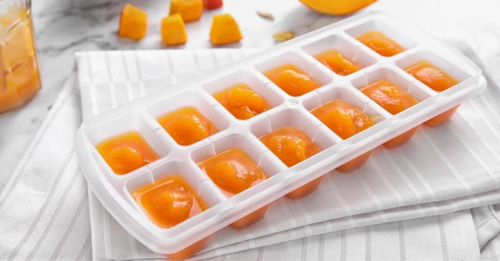 soup in ice cube tray